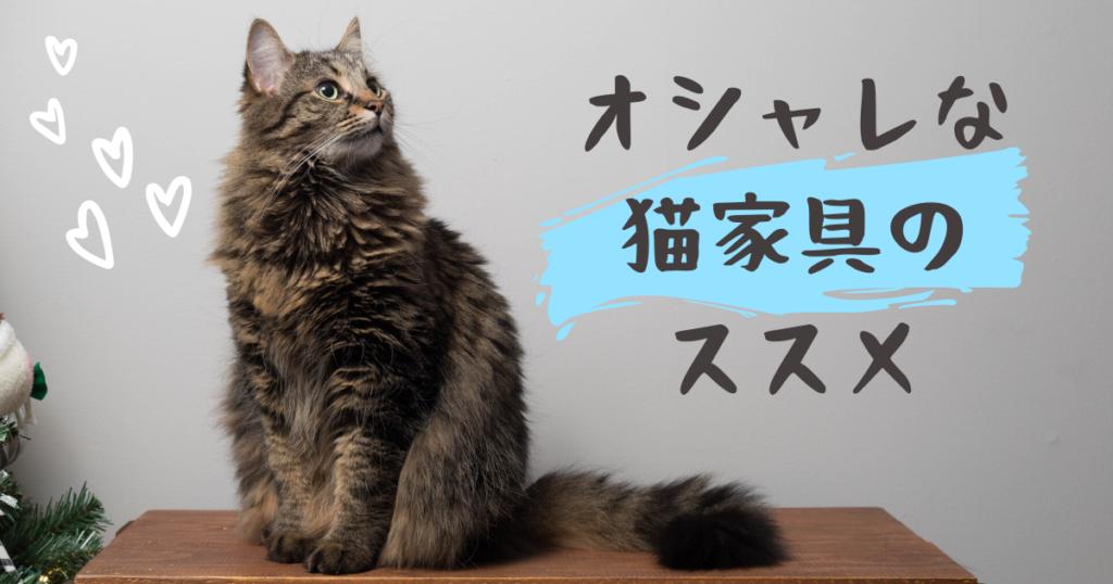 インテリアに馴染むおしゃれな猫家具5選!猫との生活を楽しもう